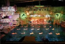 Новогоднее водное представление «Страна снов»